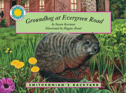 <strong><em>Groundhog at Evergreen Road</em></strong><br>Smithsonian's Backyard